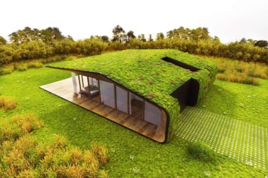 Экологичный дом: комфорт и гармония с природой